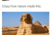 Nature u crazy